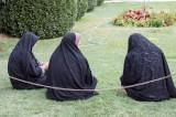 Papotage dans les jardins de Shiraz